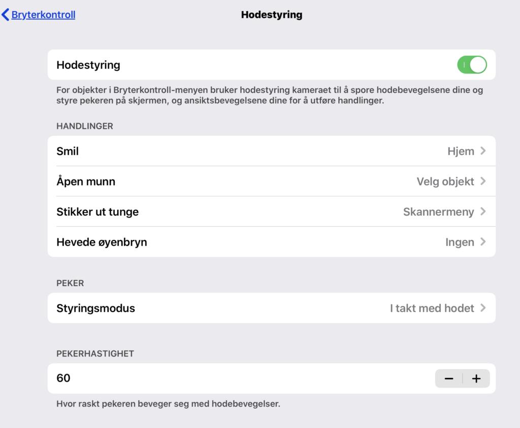 Skjermdump av innstillinger for hodestyring i iOS 13